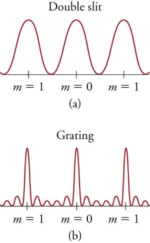 (a) Graph labeled 'double slit.' A sine curve with three peaks is plotted with its troughs on a horizontal axis. Three points on the axis are labeled, corresponding to three maxima. Left to right, the points are labeled 'm equals 1,' m equals zero,' and 'm equals 1.' (b) Graph labeled 'grating.' A curve with three tall narrow peaks is plotted with its troughs on a horizontal axis. On either side of the three peaks are two much smaller peaks (the larger peaks are separated by a total of f