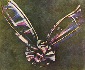 Photograph of a tartan ribbon tied like a bow.