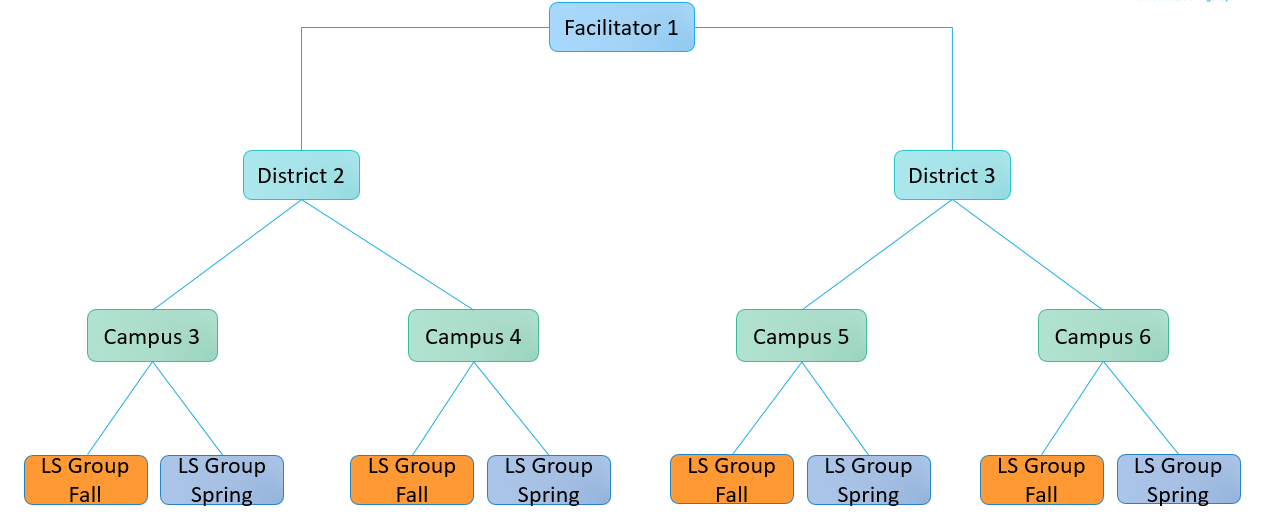 TXLS_Facilitator%20Structure