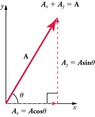 Vectors A x and A y form the legs of a right triangle and vector A forms the hypotenuse. Vector Ax is along an x-axis and vector Y is vertical and dashed. A x equals A times cosine angle. A y equals A times sine angle. A x plus A y equals A.