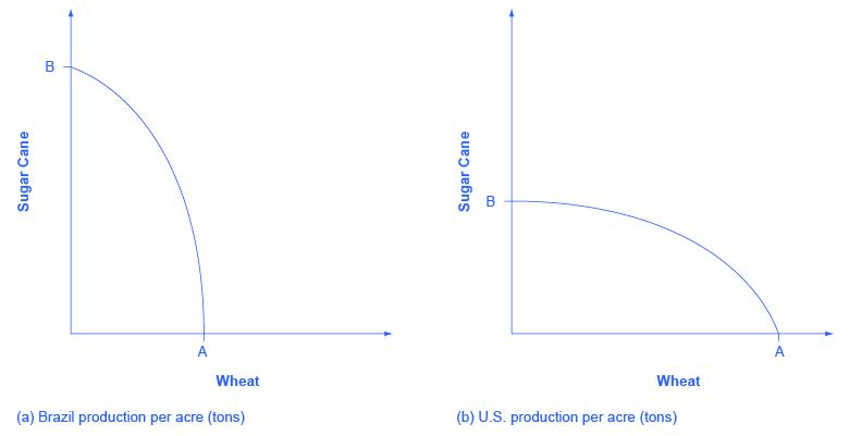 This graph shows two images. Both images have y-axes labeled 'Sugar Cane' and x-axes labeled 'Wheat.' In image (a), Brazil's Sugar Cane production is nearly double the production of its wheat. In image (b), the United States's Sugar Cane production is nearly half the production of its wheat.