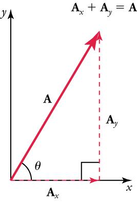 Vectors A, Ax, and Ay are shown. The vector A, with its tail at the origin of an x, y-coordinate system, is shown together with its x- and y-components, Ax and Ay. These vectors form a right triangle. The formula Ax plus Ay equals A is shown above the vectors.
