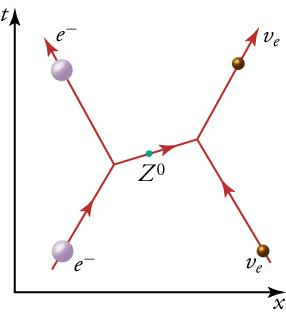 The diagram shows an electron and electron neutrino traveling upward toward each other. As the electron expels a Z boson to the right, it is projected upward and to the left. The boson is received by the electron neutrino on the right. As a result, this particle is projected upward and to the right.