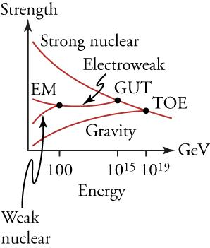 This graph plots the strengths of different forces (on the vertical axis) against their energies (on the horizontal axis). The graph shows a series of distinct lines, labeled gravity, weak nuclear, electromagnetic (EM), and strong nuclear, converging from the left to the right. The lines labeled EM and weak nuclear converge at an energy of 100 GeV and form a new line labeled electroweak. The lines labeled electroweak and strong nuclear converge at 1015 GeV. The location of their convergence is labeled GUT