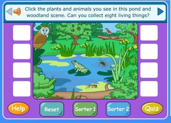 Click the picture to identify the living organisms and create a food chain.