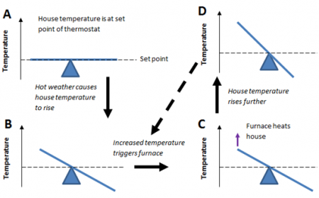 balance of house temperature at set point. Arrow points to B where hot weather upsets the balance to increased temperature. Arrow points to C where increased temperature triggers furnace and furnace heats house, which increases the temperature further (D). Arrow points back to increased temperature triggers furnace.