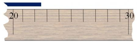 Enlarged view of ruler measuring blue line and the 22 cm markings.