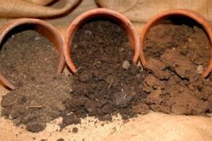 three pots of soil