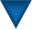 blue triangle for the overview section