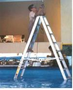 man on ladder in pool using power tools